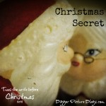 Scenes from My Life: Santa Secret